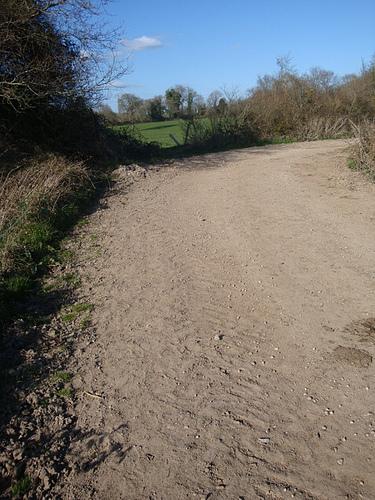 Muddy terrain