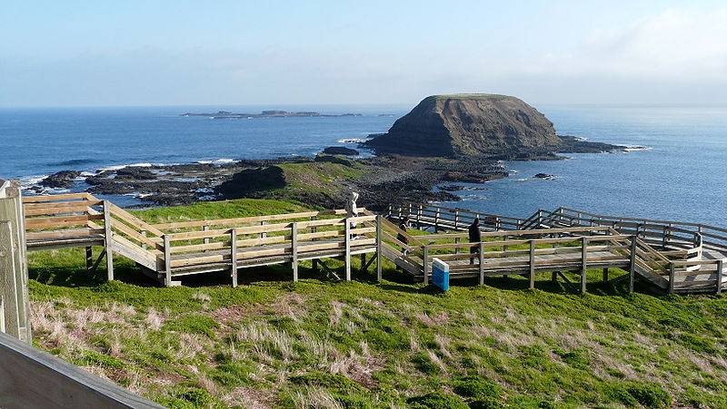 Boardwalk by the Nobbies Center, Philip Island
